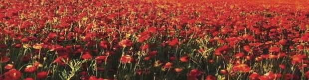 Retford Festival of Remembrance